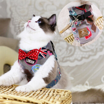 Cat rope cat traction strap cat Traction Rope vest-slip cat rope anti-break escape special cat chain