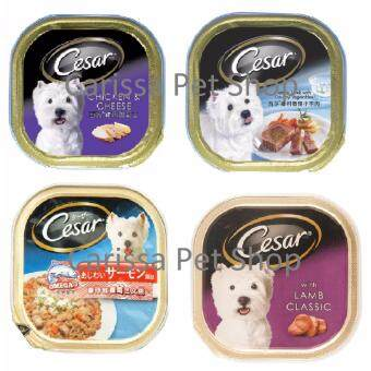 Cesar Mixed Flavor Dog Wet Food 100g X 24