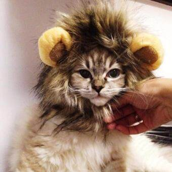 Harga Cat's Hair Hat Lion Mane Wigs color:Brown