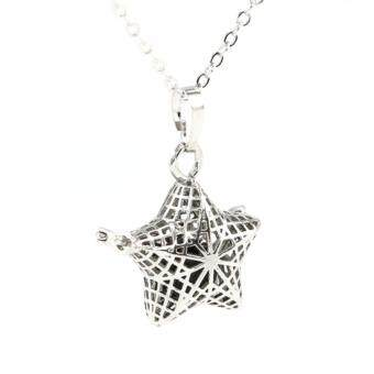 Harga Lava Stone diffuser necklace - small star 462