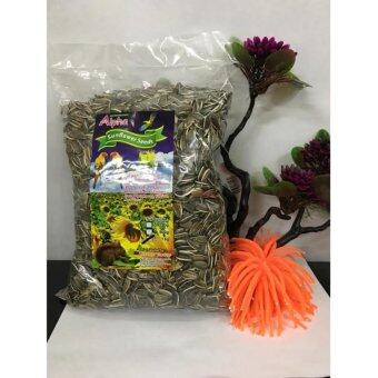 Harga Alpha Sunflower Seeds (1kg)