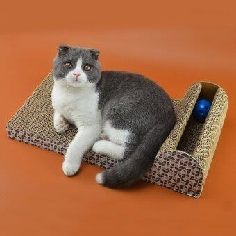 all about cats veterinary hospital kirkland wa