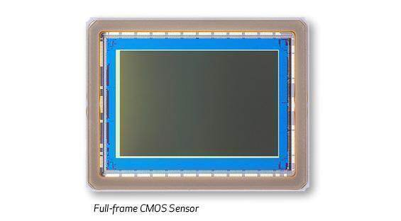 30.4 MP Full-Frame Sensor