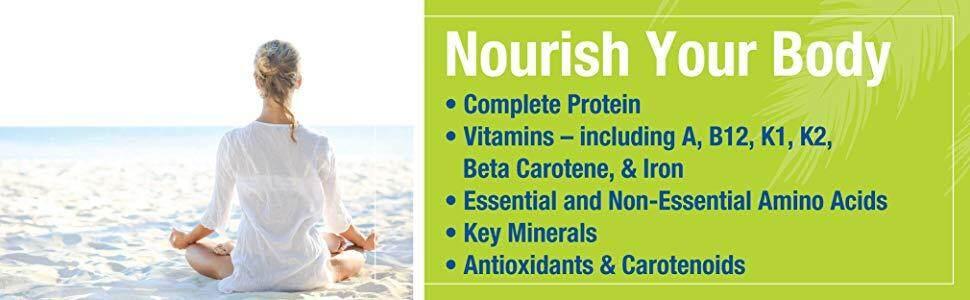 protein vitamin A C E B12 K1 K2 Beta Carotene Iron minerals amino acids antioxidant carotenoids key