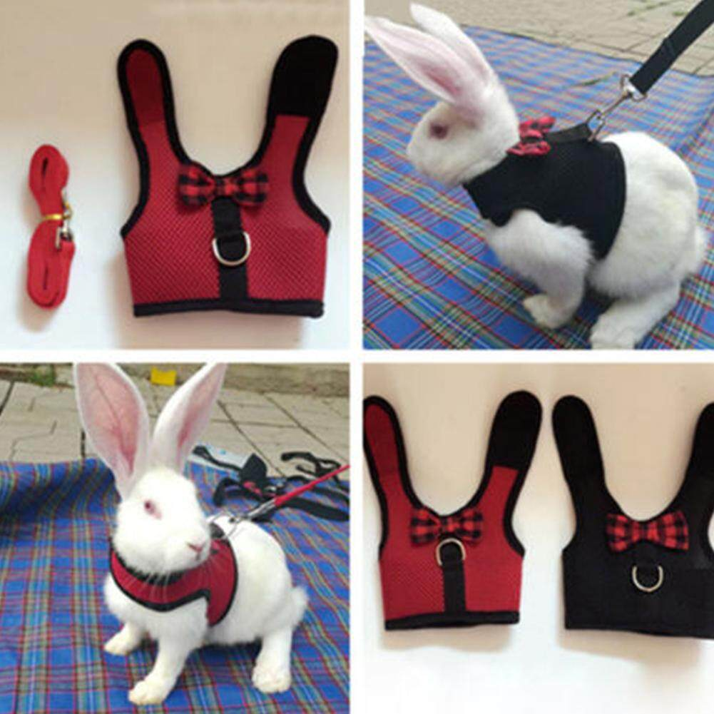 Với Kéo Dây Dây Xích Mềm Dây Dễ Thương Hamster Thỏ Mèo Vải Lưới Thú Cưng Áo Vest Nơ Chống Mòn - 4