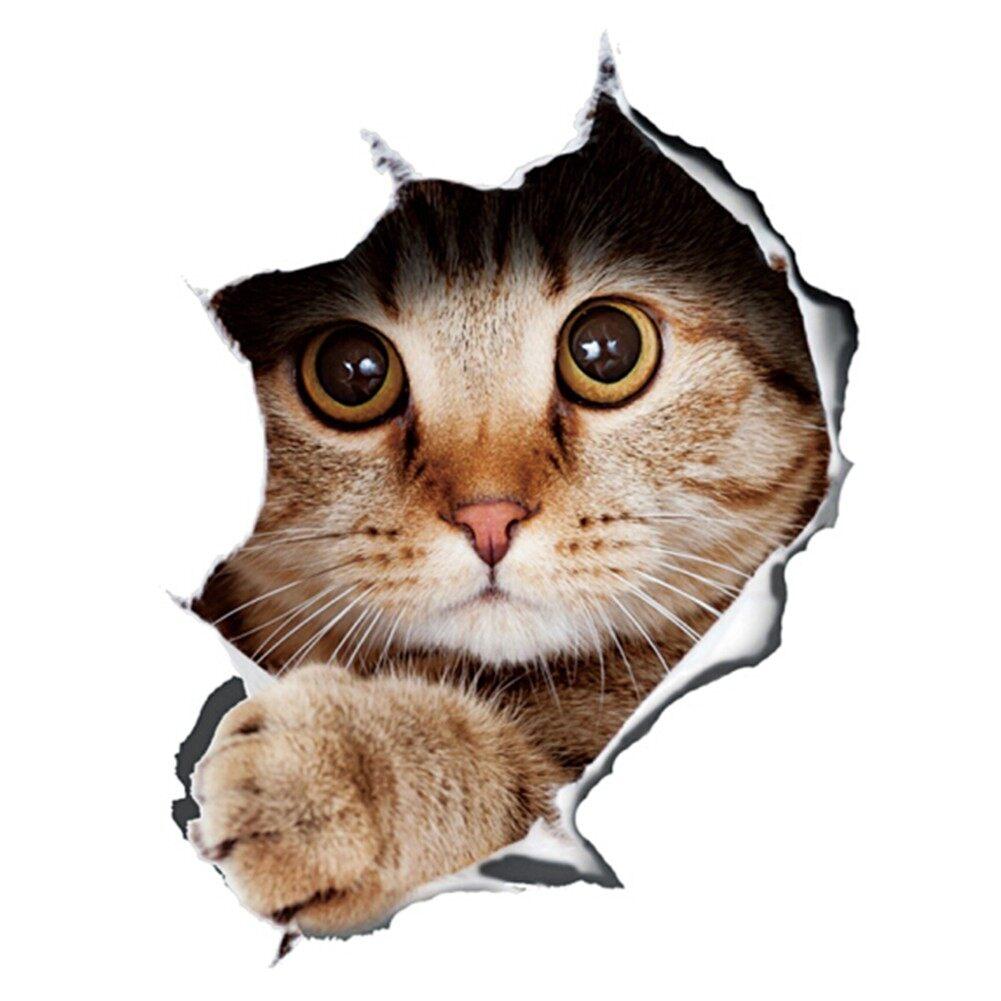 Gambar Kucing Anime godean.web.id