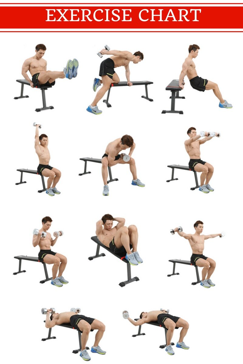 Flat Dumbbell Bench Workout Bench Lazada